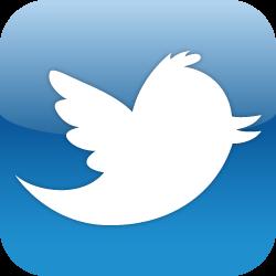 twitter_icon_ls